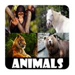 Animal Sounds For Kids